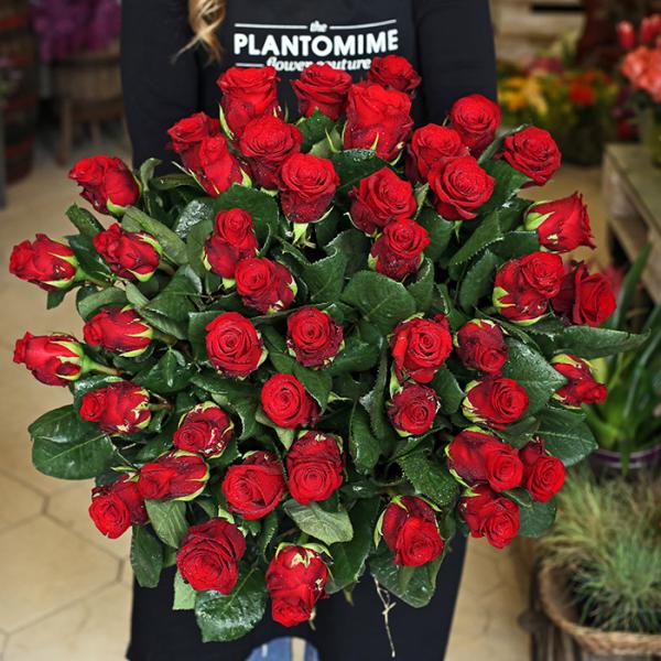 Hosszú szárú vörös rózsa csokor No.4